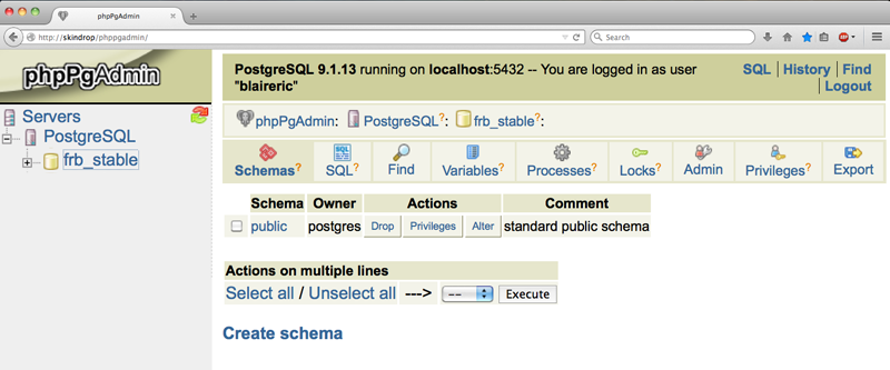 phppgadmin first page